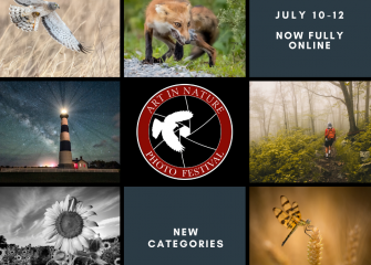 Ward Museum Hosts 10th Annual Art in Nature Photo Festival: Competition Moves Entirely Online with Celebrity Judges