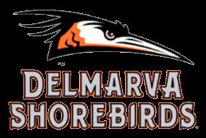 Shorebirds Movie Night Set For September 4 Sbj